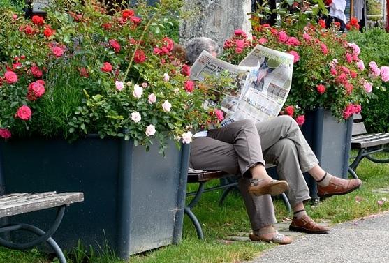 Lasa tidning